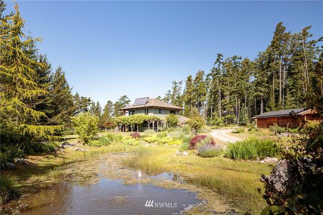 1051 Lopez Rd, Lopez Island, WA 98261 (#1660155) :: Ben Kinney Real Estate Team