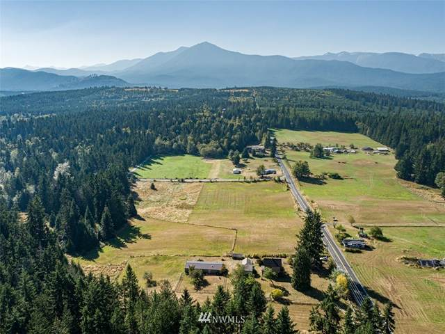 3863 Blue Mountain Road, Port Angeles, WA 98362 (#1660869) :: McAuley Homes