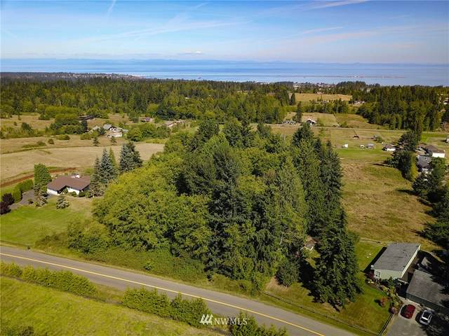9999 Key Road, Port Angeles, WA 98362 (#1661181) :: McAuley Homes