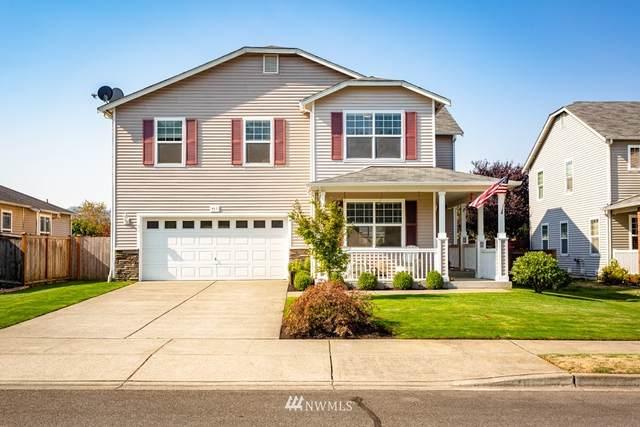 917 Riddell Avenue NE, Orting, WA 98360 (#1661234) :: Ben Kinney Real Estate Team