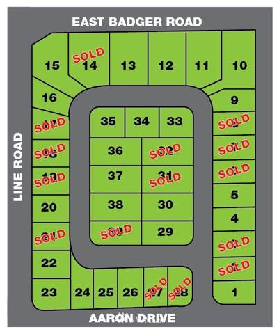 1761 Aaron Drive, Lynden, WA 98264 (#1661570) :: Ben Kinney Real Estate Team