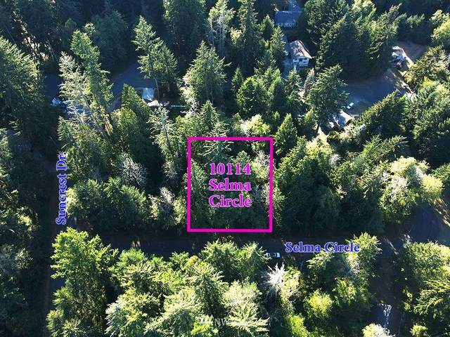 10114 Selma Circle, Anderson Island, WA 98303 (#1661702) :: NextHome South Sound