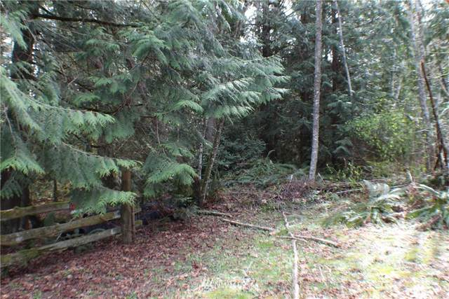 0 Frog Song Place NE, Kingston, WA 98346 (#1662263) :: Hauer Home Team