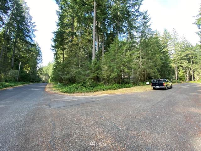 12824 98th Street Ct, Anderson Island, WA 98303 (#1662566) :: Lucas Pinto Real Estate Group