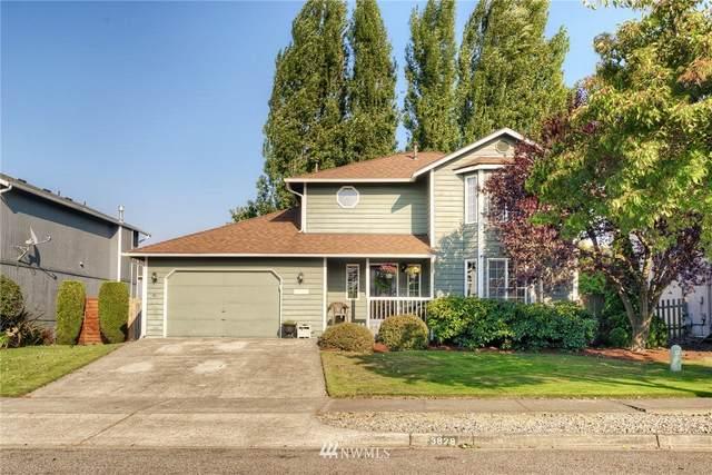 3829 52nd Avenue NE, Tacoma, WA 98422 (#1662587) :: Ben Kinney Real Estate Team