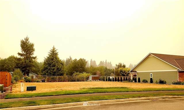0 Royal Loop, Sequim, WA 98382 (#1662631) :: Capstone Ventures Inc
