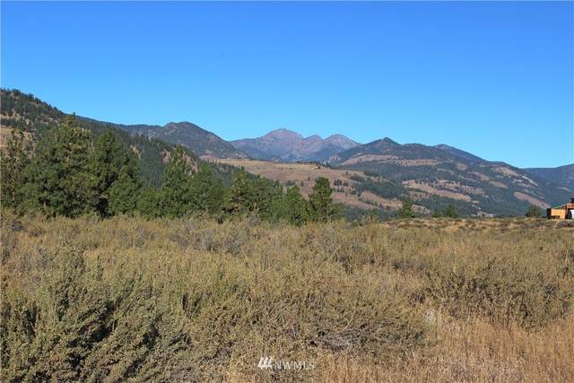 0 Palomino Rd, Lot #28, Winthrop, WA 98862 (#1662680) :: Ben Kinney Real Estate Team