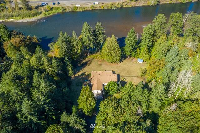 260 Deer Park Lane, Toledo, WA 98591 (#1662818) :: Alchemy Real Estate