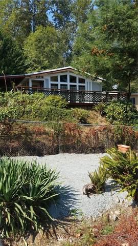 14316 215th Avenue E, Bonney Lake, WA 98391 (#1663035) :: Becky Barrick & Associates, Keller Williams Realty