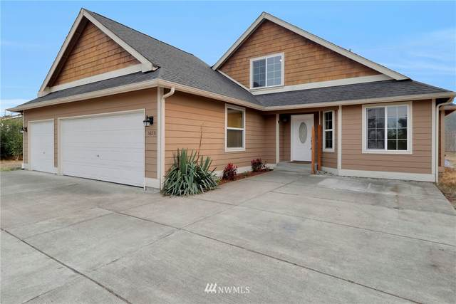 18231 Lawton Lane SW, Rochester, WA 98579 (#1663199) :: Better Homes and Gardens Real Estate McKenzie Group