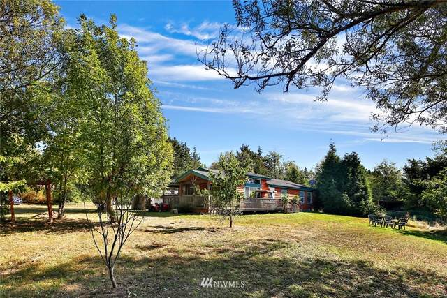 3125 Brown Road, Ferndale, WA 98248 (#1663241) :: Pacific Partners @ Greene Realty