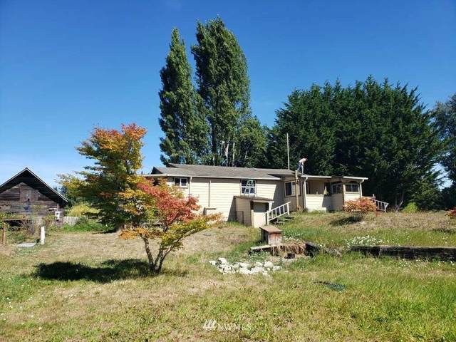 3906 S Cayanus Road, Port Angeles, WA 98363 (#1663260) :: McAuley Homes