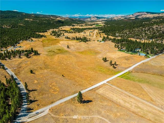 39 Cape Labelle Road, Tonasket, WA 98855 (#1663342) :: Capstone Ventures Inc