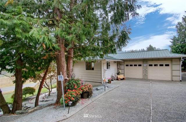 510 Wanapum Drive, La Conner, WA 98257 (#1663563) :: Becky Barrick & Associates, Keller Williams Realty