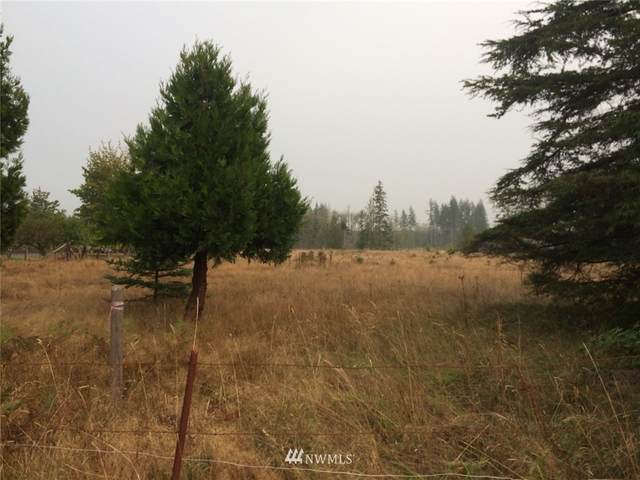 1036 Logan Hill Road, Chehalis, WA 98532 (#1663699) :: Better Properties Lacey