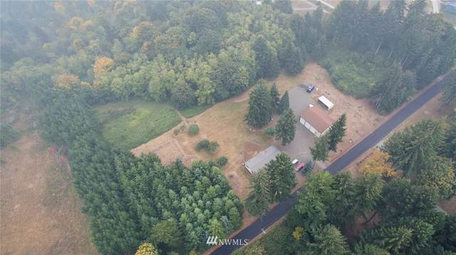 40011 NW 9th Avenue, Woodland, WA 98674 (#1664333) :: Ben Kinney Real Estate Team