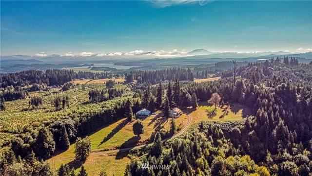 360 Dahlman Road, Castle Rock, WA 98611 (#1664387) :: Urban Seattle Broker