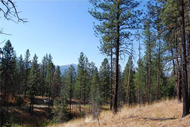 1 Long Horn Trail, Riverside, WA 98849 (MLS #1664407) :: Brantley Christianson Real Estate