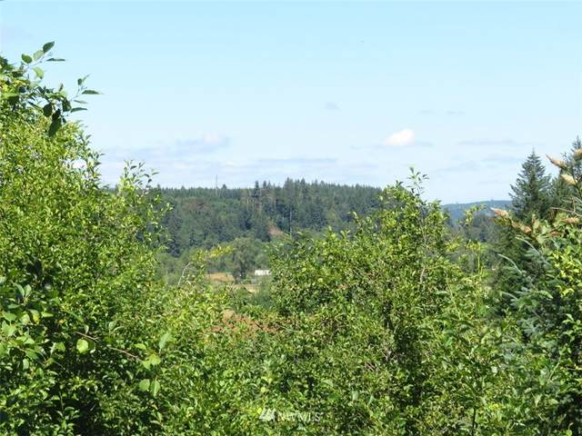 132 Roslyn Lane, Centralia, WA 98531 (#1664615) :: NextHome South Sound