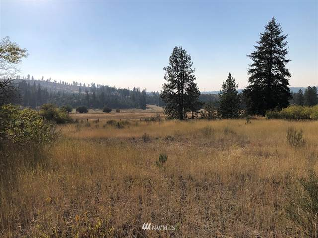 35475 Sr 231 N, Reardan, WA 99029 (#1664669) :: Priority One Realty Inc.