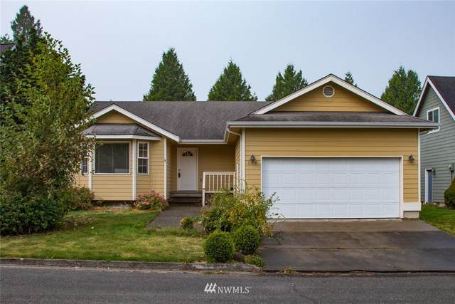 117 Jefferson Court, Sumas, WA 98295 (#1664939) :: Better Properties Lacey