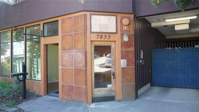 7033 15th Avenue NE E, Seattle, WA 98117 (#1665083) :: McAuley Homes