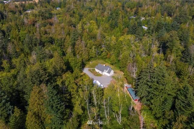 5000 Yellow Brick, Bellingham, WA 98226 (#1665410) :: Ben Kinney Real Estate Team