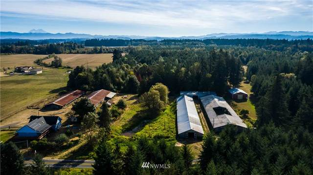 103 Classe Road, Toledo, WA 98591 (#1665420) :: Pacific Partners @ Greene Realty