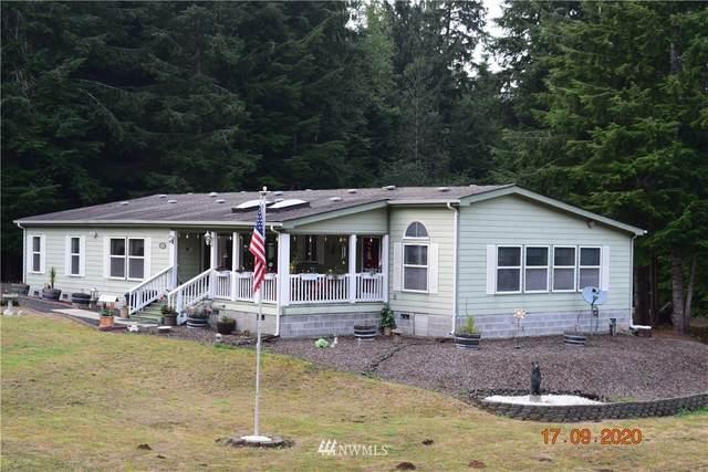 1425 Raymond-South Bend Road, Raymond, WA 98577 (#1665561) :: Ben Kinney Real Estate Team
