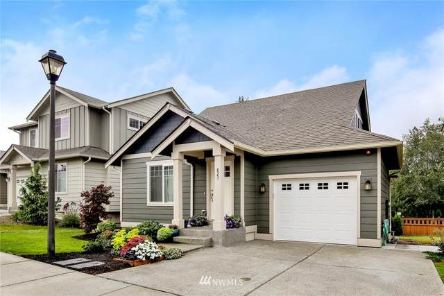 823 Violet Lane, Bellingham, WA 98226 (#1665597) :: Better Properties Lacey