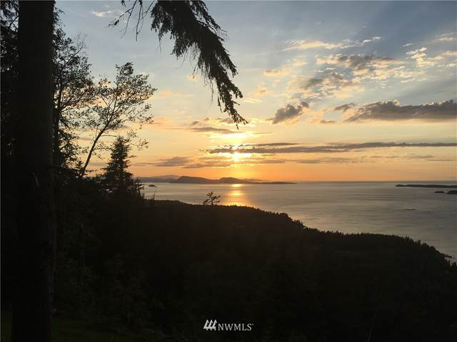 5 Day Lake Road And Wright Road, Orcas Island, WA 98245 (#1665737) :: Engel & Völkers Federal Way