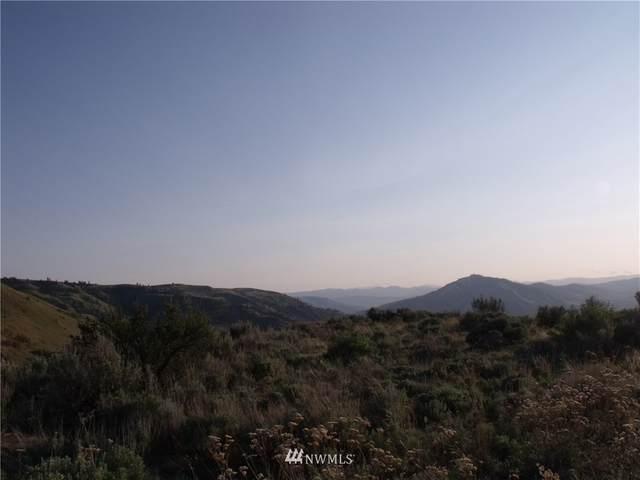 0 Mcneil Canyon Road, Orondo, WA 98817 (#1665752) :: Engel & Völkers Federal Way
