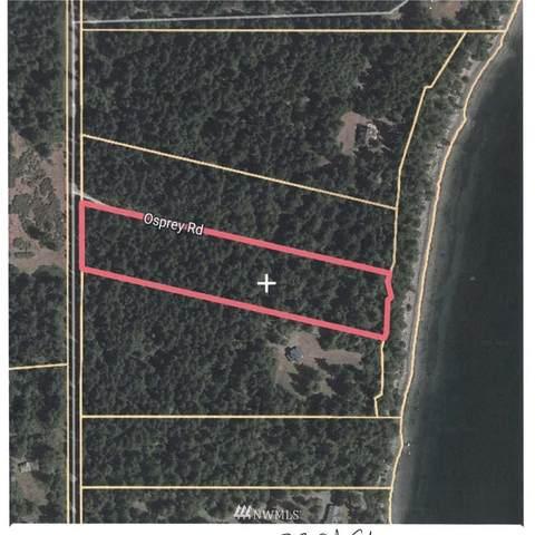 2 Osprey Road, Lopez Island, WA 98261 (#1665803) :: Ben Kinney Real Estate Team