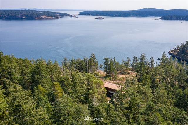 117 Sawmill Road, Lopez Island, WA 98261 (#1665930) :: Ben Kinney Real Estate Team