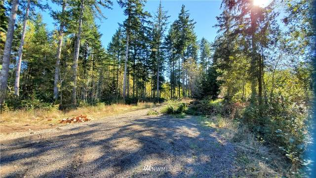 0 Wild Grape Way, Grapeview, WA 98546 (#1665986) :: Icon Real Estate Group