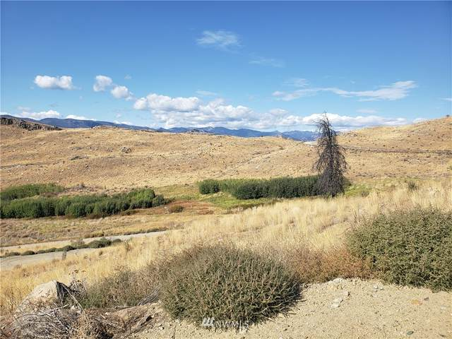 0 Methow River Ranch, Pateros, WA 98846 (#1666469) :: The Shiflett Group