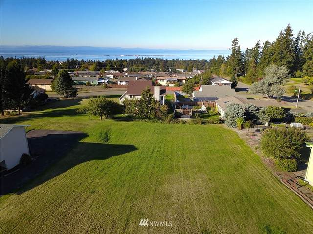 9999 Lauridsen, Port Angeles, WA 98362 (#1666599) :: Ben Kinney Real Estate Team
