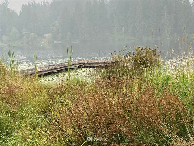 5331 Panther Lake Drive, Snohomish, WA 98290 (#1666821) :: Ben Kinney Real Estate Team