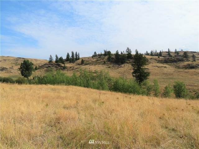 0 Vulcan Mt. Road, Curlew, WA 99118 (#1667085) :: Costello Team