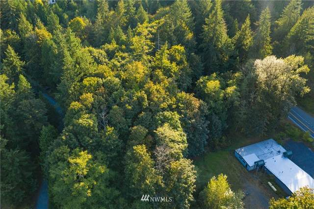 684 Chuckanut Drive, Bellingham, WA 98229 (#1667357) :: Priority One Realty Inc.