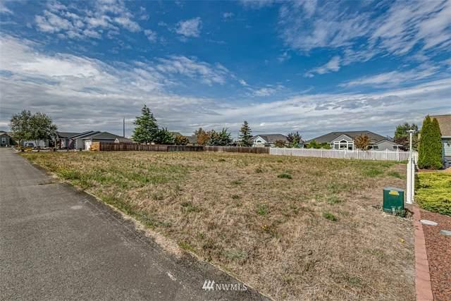 9999 Elk Horn Loop, Sequim, WA 98382 (#1667988) :: Ben Kinney Real Estate Team