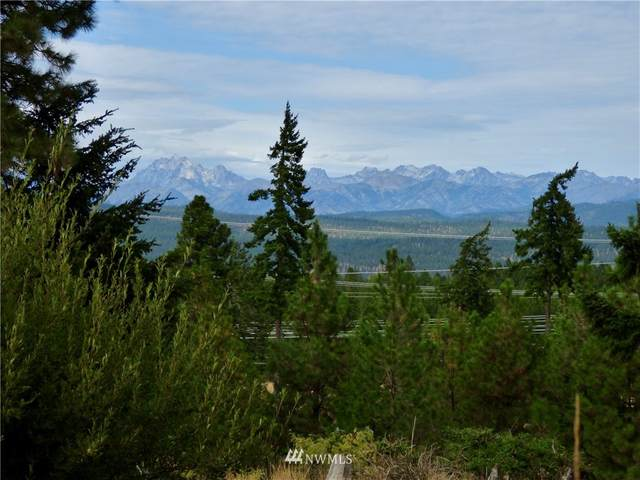 8430 Upper Peoh Point Road, Cle Elum, WA 98922 (#1668017) :: Capstone Ventures Inc