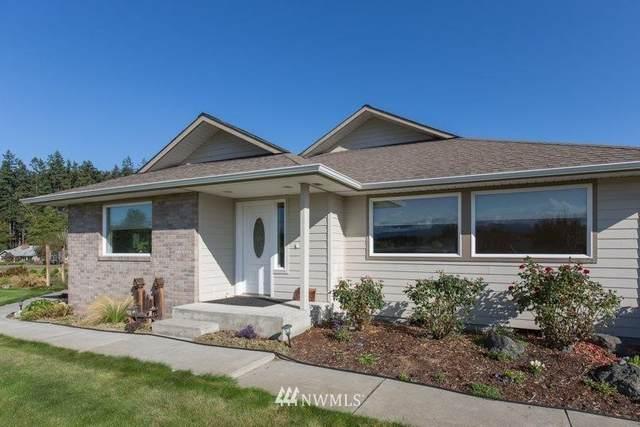 131 Letha Lane, Sequim, WA 98382 (#1668124) :: Urban Seattle Broker