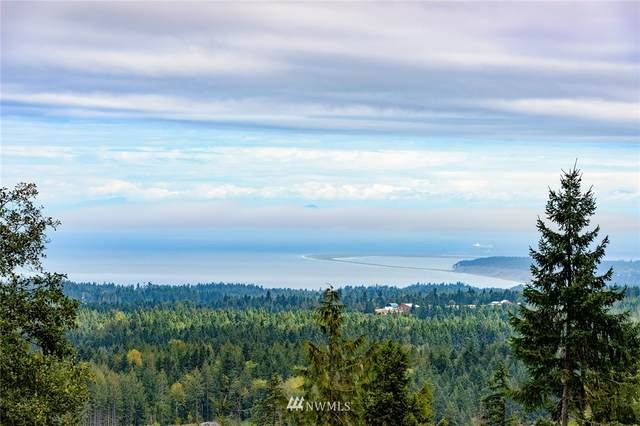 3585 Mt Pleasant Road, Port Angeles, WA 98362 (#1668443) :: Better Homes and Gardens Real Estate McKenzie Group