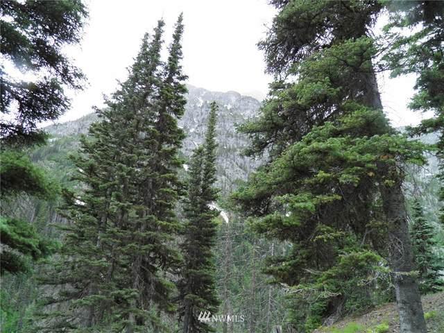 0 E Stiss Canyon Way, Wenatchee, WA 98801 (#1668619) :: Keller Williams Realty