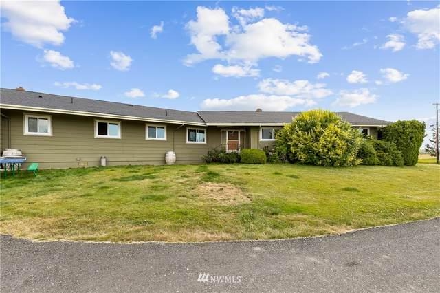 368 W Smith Road, Bellingham, WA 98226 (#1668675) :: Ben Kinney Real Estate Team