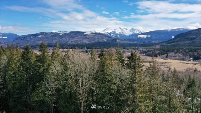 0 Valley Highway, Acme, WA 98220 (#1668685) :: NextHome South Sound