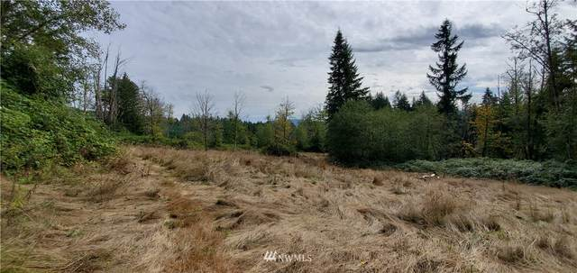 15109 Old Highway 99 SE, Tenino, WA 98589 (#1669343) :: Ben Kinney Real Estate Team