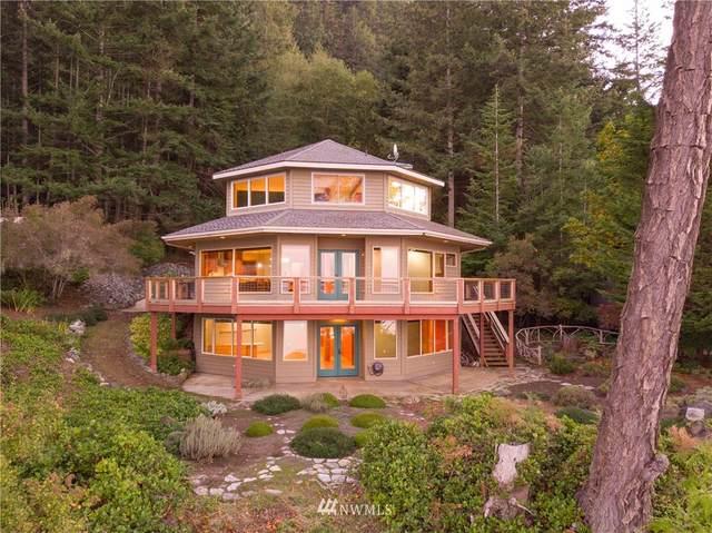 391 Raccoon Point Road, Orcas Island, WA 98245 (#1669761) :: Pickett Street Properties