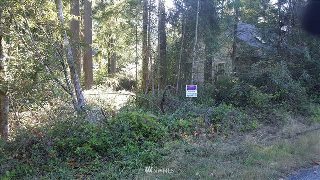 10707 Pioneer Drive, Anderson Island, WA 98303 (#1669770) :: NW Home Experts